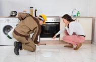 سمپاشی سوسک و راه های دفع حشرات موذی