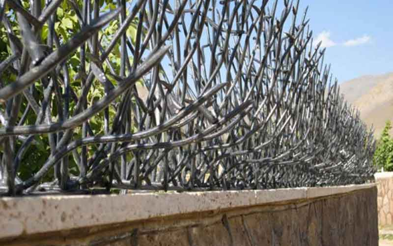 جنس حفاظ شاخ گوزنی