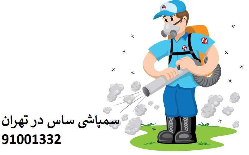 خدمات سمپاشی ساس در تهران