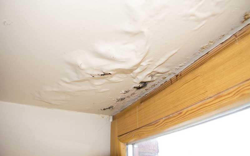 رفع نم سقف پشت بام ارزان