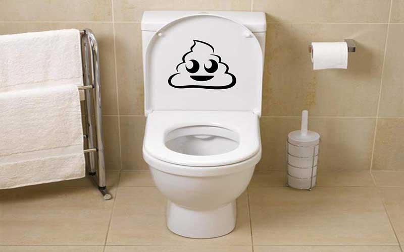 Photo of چگونه تعمیر توالت فرنگی را حرفه ای انجام دهیم؟
